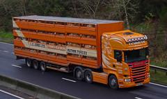 LE Jones Ltd of Ruthin Scania R580 PE64MWC (andyflyer) Tags: truck trucking scania a90 ruthin haulage hgv roadtransport cattletruck cattlewagon roadhaulage scaniar580 livestocktruck lejones livestocklorry lejonesltdofruthin pe64mwc