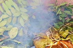Elaboración del Pib. Día de muertos. Yucatán, México. (Marysol*) Tags: méxico manos yucatán pib proceso elaboración díademuertos mucbipollo hanalpixán plátanohoja