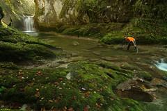 Guy photographiant la Cascade  amont du Grand Olympe -Jura (francky25) Tags: guy la grand du jura cascade franchecomté olympe amont billaude photographiant