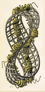 Escher - Nastro di moebius
