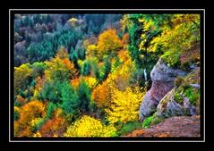 Wackenberg-10 (Marc GAPP) Tags: automne vosges dabo hommert sarrebourg vosgesdunord fhotoroomhdr3xpsdramatictonemappedcolordefaultcolorsorton rehthal