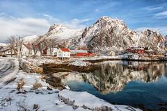 A Goat, an Island, a Fjord (Kristin Repsher) Tags: winter snow norway reflections nikon fjord lofoten arcticcircle svolvaer svolvr lofotenislands svinya northernnorway svolvrgeita arcticlight d700