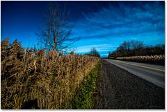 Country Road Blues (Sigpho) Tags: sigpho landscape nikon nice road
