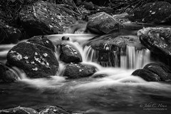 As Autumn Approaches (John C. House) Tags: everydaymiracles nik nikon monochrome smokies johnchouse tennessee mountains d700 blackandwhite nationalpark tennesee