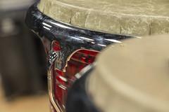 Bongo Drum (Brandon J Hale) Tags: music bongo drums instrument concert