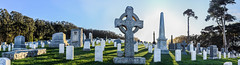 richard comba u.s. army 1837 - 1907 (pbo31) Tags: presidio sanfrancisco california nikon d810 color october fall 2016 boury pbo31 panoramic large stitched panorama sanfrancisconationalcemetary sunset cemetary honor service fallen soul war america forces grave rest green shadow death