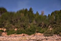Reflexos na barragem!! (puri_) Tags: barragem maranho alentejo portugal gua reflexo rvores pedras picmonkey
