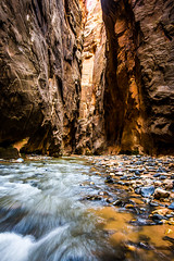 To the Zion Narrows! Nikon D810 Fine Art Zion National Park Autumn Hike! Dr. Elliot McGucken Fine Art Landscape Photography! (45SURF Hero's Odyssey Mythology Landscapes & Godde) Tags: to zion narrows nikon d810 fine art national park autumn hike dr elliot mcgucken landscape photography landscapes nature arts natural bryce canyonautumn winter hdr majestic leaves long exposures maples cottonwoods np