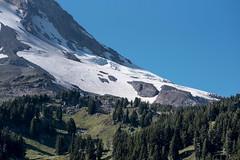 Where Green Meets Glacier (maytag97) Tags: maytag97 mounthood mthood glacier newtonclarkglacier tamron 150 600 150600