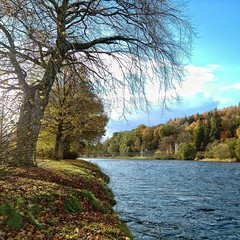 The River Spey, Aberlour