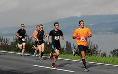 Hallwilerseelauf: Halbmarathon