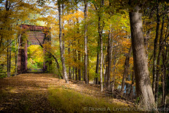 Erie Bridge (Dennis A. Livesey) Tags: autumn canadiangeese erie erienewburghbranch erierailroad moondacreek saliburymills abandoned chipmunk trussbridge beaverdamlakesalisburymills newyork unitedstates us