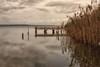 uno stagno di pace (mat56.) Tags: paesaggi paesaggio landscapes landscape stagno pond pontile landingstage acqua water riflessi reflections cielo sky cabras oristano sardegna antonio romei mat56 pace peace