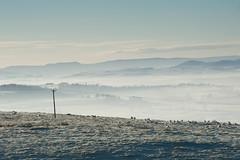 Misty Wooler valley (nigeltriharder) Tags: northumberlandwinter cheviots wooler mist frost ice winter hills valleys cold