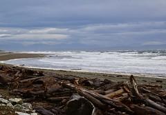Rough waters, Strait of Georgia (shireye) Tags: lazo comox bc britishcolumbia straitofgeorgia toughwaters mountains clouds waves windy logs driftwood nikon d610 24120 ff fullframe fx