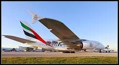 A6-EEQ Emirates United for Wildlife Airbus A380-800 (Tom Podolec) Tags: this image may be used any way without prior permission  all rights reserved 2015news46mississaugaontariocanadatorontopearsoninternationalairporttorontopearson
