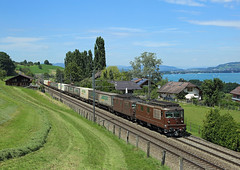 179 + 174, Spiez, 3 Aug 2016 (Mr Joseph Bloggs) Tags: bahn bls sbb switzerland train treno railway railroad cargo freight merci spiez lotschberg intermodal container re425 re44 179 174 lötschberg