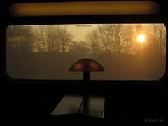 Issue de secours (nathaliedunaigre) Tags: train vue view intrieur extrieur interior exterior inside outside paysage landscape wagon sun soleil matin morning leverdesoleil sunrise contraste contrast