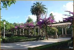 Parque de Aveiro (14-7-2010) (Juanje Oro) Tags: aveiro portugal panoramio 099 2010 distritodeaveiro parque flor jardin