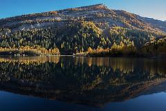 Reflection (Sven Vietmeier) Tags: automne derborence lärche mélèzes rando schweiz suisse switzerland valais wallis wanderung randonnée lã¤rche mã©lã¨zes randonnã©e