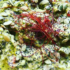 #guacamole #aove #semillas #chia #abobora #itotogarashi #chili #foz #fozdoiguacu #iguassufalls #igu #iguazu #verao2016 #cocina #foodstagram #gastronomy #sabor #foodlover #foodgasm #instafood #instacuina #foodphoto #delicious #gourmet #truecooks (felipefaouakhiri) Tags: guacamole aove semillas chia abobora itotogarashi chili foz fozdoiguacu iguassufalls igu iguazu verao2016 cocina foodstagram gastronomy sabor foodlover foodgasm instafood instacuina foodphoto delicious gourmet truecooks