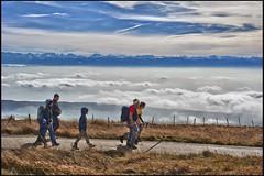The Chasseral, Canton of Bern. Yes,  just above the clouds.... Swiss autumn time No, 1139. (Izakigur) Tags: izakigur chsseral nikon jura switzerland svizzera nikond700 nikkor2470f28 d700 dieschweiz chasseral myswitzerland europa kantonbern
