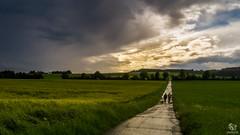 After Thunderstorm (SeSonnen) Tags: rainc cloud sky road people hicking eifel eifelsteig field landscape nature