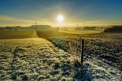 frosty morning.jpg (TK10_01) Tags: acker landscape landschaft sonyalpha6000 carlzeiss mnsterland frost sonnenaufgang felder fields winter sunrise sonysel1670mm