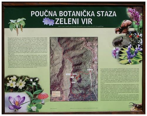 2009 S 1431 ZeleVir_01a 5275 GoogleMaps
