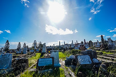 DSC01770 (Damir Govorcin Photography) Tags: graves sun natural light grass clouds waverley cemetery sydney sony a7ii zeiss 1635mm history