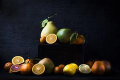 Citrus Still Life (saraghedina) Tags: citrus orange grapefruit lemon meyerlemon winter juice freshness stilllifephotography stilllife foodphotography foodstyling darkfoodphotography nopeople canon produce farmersmarket fruit yellow color vitamins