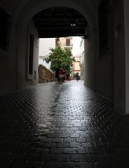 Siviglia walk (xiaolifra) Tags: siviglia walking espana spain shadow lights chance portraits picoftheday photo moment time bridge amazing colorful dark blackwhite black simply emotions