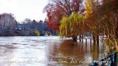 Torino (48) (cattazen.com) Tags: torino alluvione po piena esondazione parcodelvalentino murazzi pienadelpo cittditorino turin piemonte