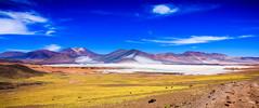 Chile 2013-2799 (sebtac) Tags: chile2013 chile 2013 outdoor reservanacionallosflamencos