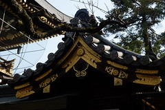 日本 京都奈良5日遊 Koyto&Nara JAPAN_20160225_276 (PS612) Tags: 日本 京都府 北野天滿宮 kitanotenmangushrine sagano kyoto japan spring fujifilmxt10