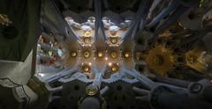 #04 Sagrada Familial (Rmonty119) Tags: canong7x travel spain indoor architcture sagradafamilial