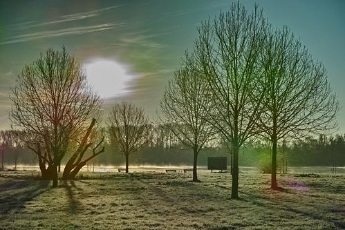 Winter morning sun
