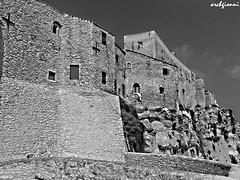 tremiti (archgionni) Tags: fortezza castle muri walls pietre stones medioevo middleage storia history isola island tremiti costruzione building bw christiangroup