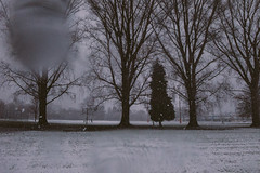 Decembrrrrrr (Mike Babiarz) Tags: landscape winter cold december snow strathcona park eastvancouver bc canada ricoh grd4