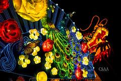2016_1209-dmc_lantern_festival_01 (Dennis M Chua) Tags: a7ii columbus ohio sony usa asian culture holiday slr50f11fe nightphotography
