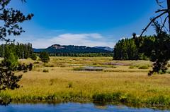 Near swan lake (sandy bohlken) Tags: 2016 colterbay day6 grandtetonnationalpark jacksonhole nationalpark september tetons wyoming hike vacation