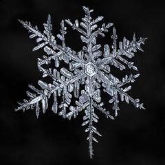 Snowflake-a-Day #9 (Don Komarechka) Tags: snowflake snow flake ice crystal nature water frozen fractal macro mpe air focusstacking
