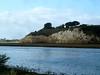 (ArgyleMJH) Tags: geology sedimentary miocene pliocene siltstone mudstone capistranoformation dipping faulting uppernewport newportbay newportbeach orangecounty california