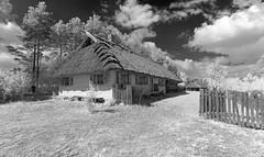 PL-PDL Osowicze - Chata 2014-08-09 (N-Blueion) Tags: