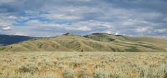 Idaho Landscape (Chris Le Texier) Tags: clouds canon landscape spurs july sage idaho ridge draw spencer desolate mountians draws saddle saddles sagebrush 2015 ef2470 60d ef2470mmf28lii spencerid
