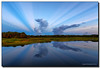 Rays, Rays, Rays (Fraggle Red) Tags: morning storm nature clouds sunrise reflections landscape dawn florida wetlands thunderstorm rays hdr stormclouds boyntonbeach 7exp calmmorning greencay greencaywetlands canonef1635mmf28liiusm dphdr palmbeachco canoneos5dmarkiii 5d3 5diii