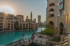 20150822-_DSC3237 (docdave71) Tags: pictures fountain skyline dubai united emirates arab fotos gambar bilder billeder  immagini kuvat  skyscraperfilled