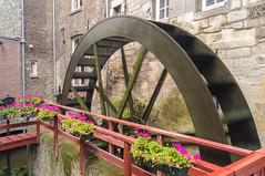 Water Mill (Matt H. Imaging) Tags: netherlands maastricht sony nederland slt limburg a55 sal1855 slta55v ©matthimaging