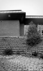 outdoor school / school in nature Volyně (ondey) Tags: blackandwhite bw house building architecture ruin ruina staircase diningroom dům architektura southbohemia stavba schody outdoorschool budova jižníčechy černobílá schodiště jídelna volyně školavpřírodě areál schoolinnature vevolyni ladislavkonopka architektkonopka