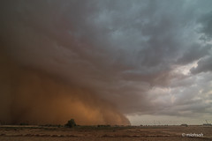 DSC_0956 (mlahsah) Tags: storm clouds landscape sand nikon ngc sandstorm d750 sa ksa jazan      sabya     nikond750